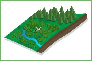 Forestry Planning